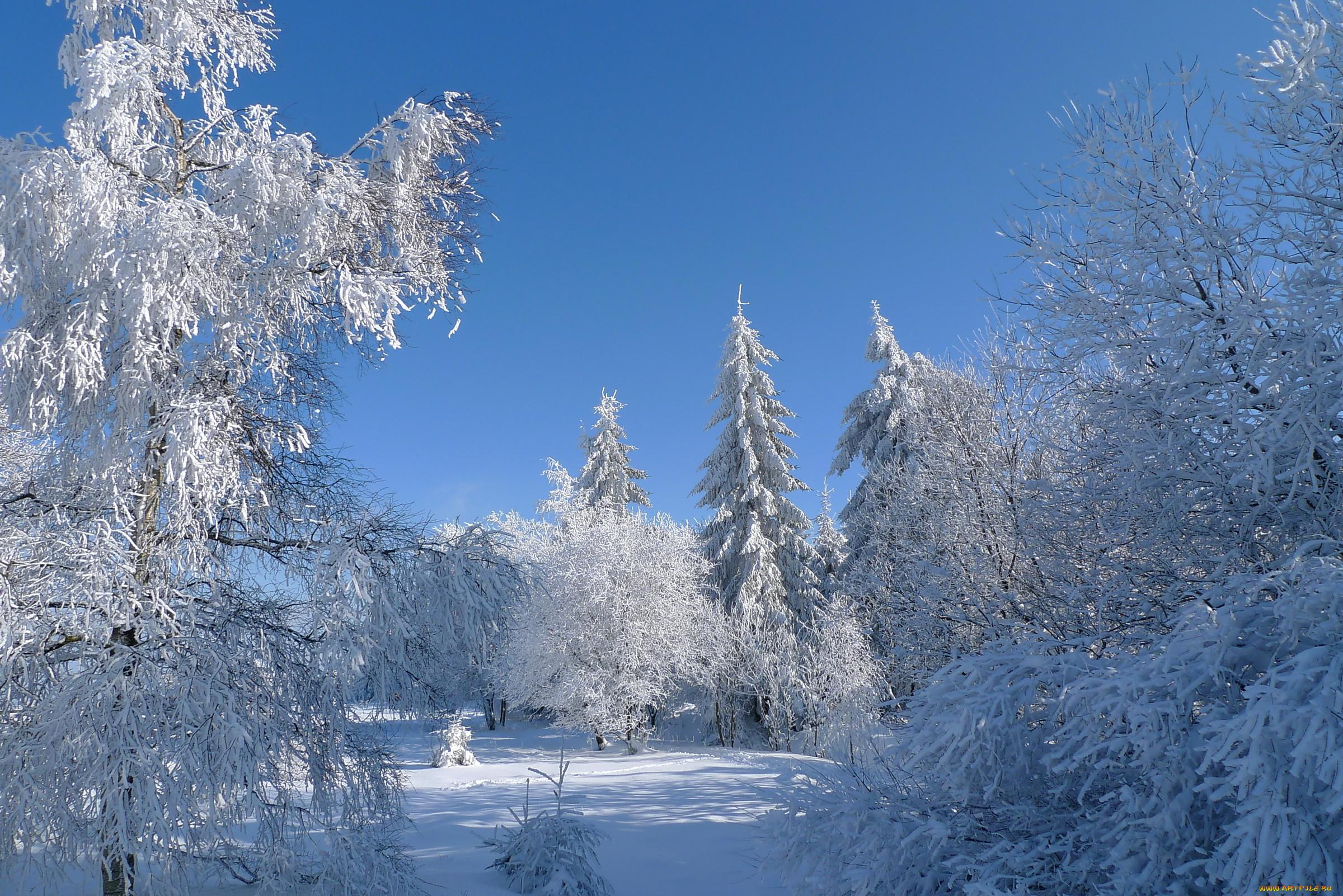 фотографии с зимними пейзажами откуда открывается самый